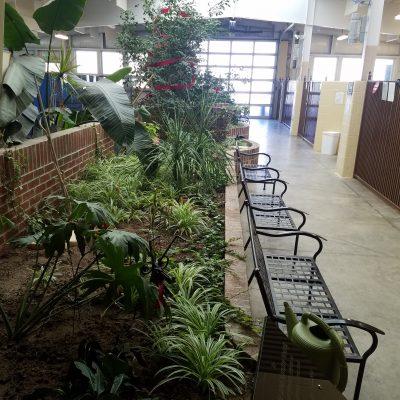 Courtyard Setting