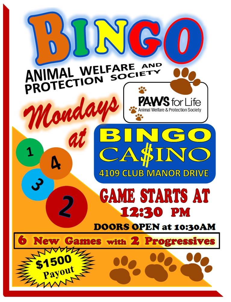 Bingo-Flyer-New