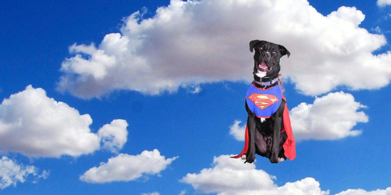 Superhero-slider-3